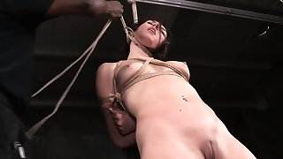 Bound tattoo sub dominated by black dom