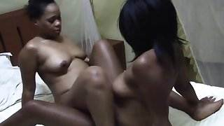 Black lesbians grinding pussies together and fingering